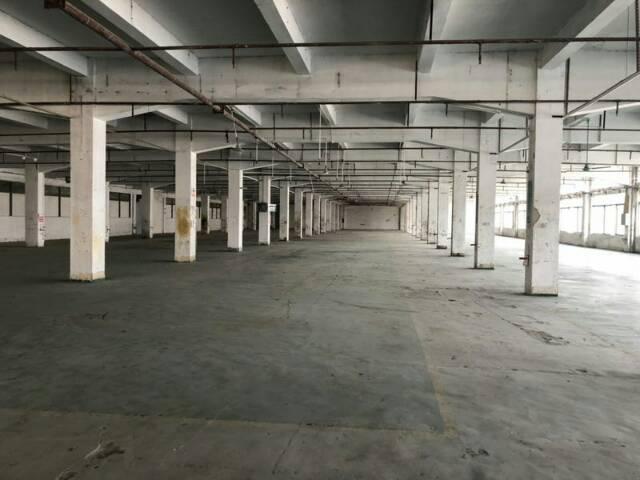 大岭山最便宜的工业园区标准厂房出租