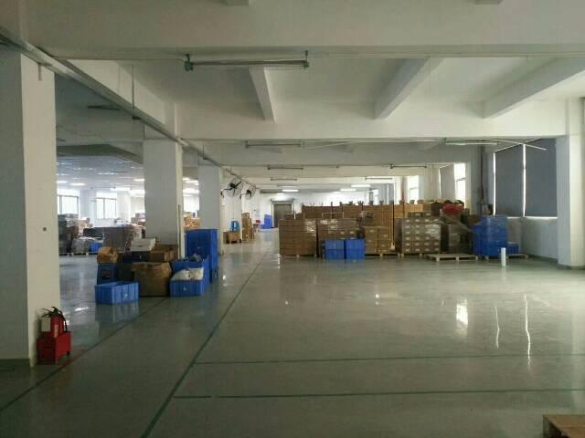 福永凤凰新出原房东楼上整层1380平方标准厂房,园区大气,