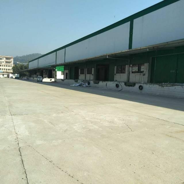 清溪镇博深高速500米处标准物流仓库单一层钢构15000平方