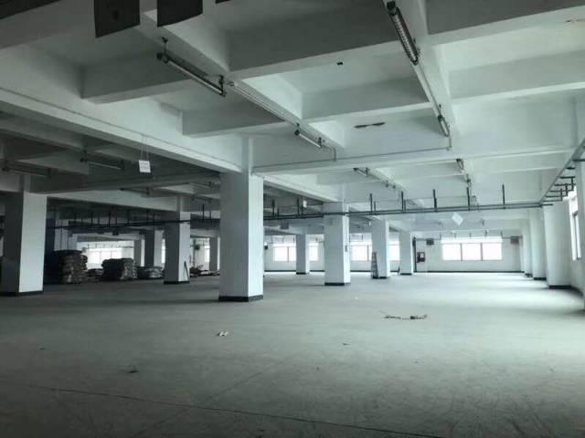 坪山深汕路边新出独院仓库楼上6000平出租,有2部5吨货梯