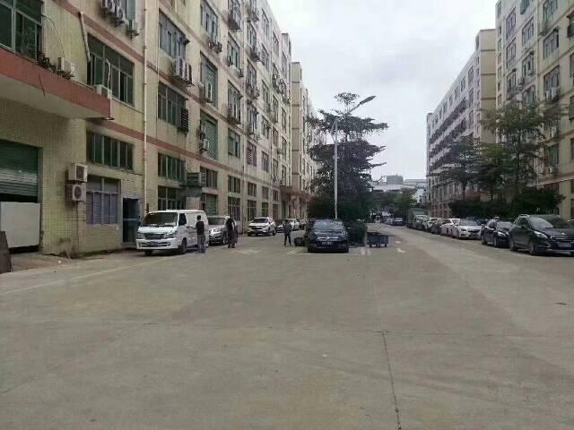 福永塘尾一楼1750平米原房东带红本厂房出租,带行车,