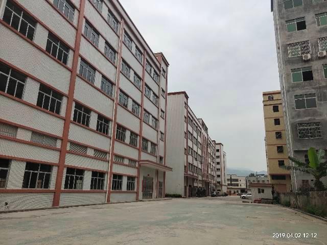 惠城区金龙大道边全新原房东厂房15000平方