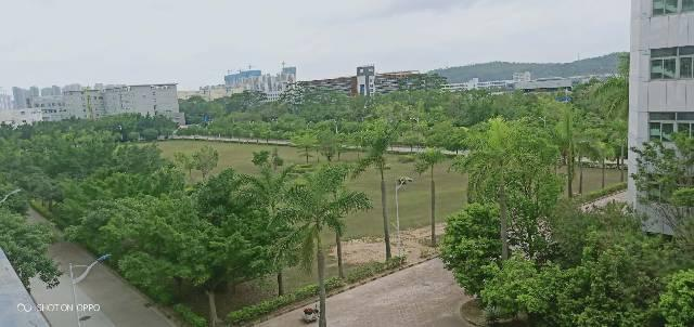 近坪山宝龙楼上一整层10000平米电商仓库出租