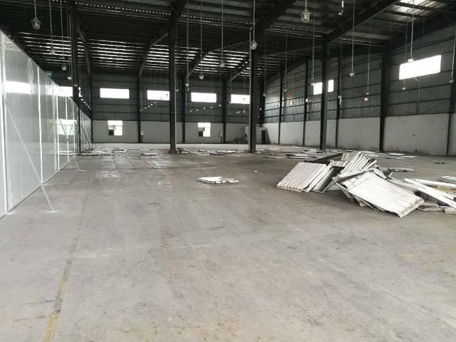惠城区8000平物流仓出租滴水8米带卸货平台