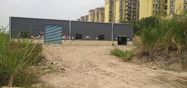 陈江镇单一层滴水八米钢构出租1250平方