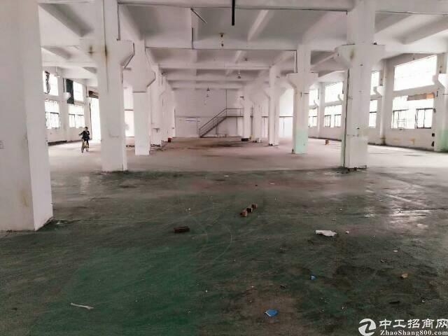 惠城区江北新出原房东单一层砖墙到顶滴水8m3200平方招租