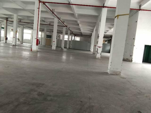 横岗保安标准厂房3500平米左右价格实惠面积实在