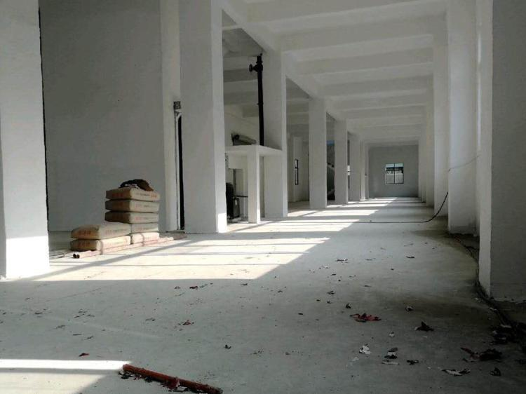 惠城区马安镇1000平标准厂房证件齐全可办环评