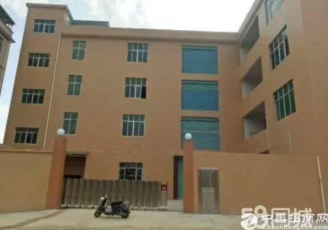 惠城区马安镇原房东独院厂房现成七米牛角