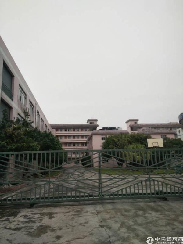 清溪国有证建筑5000小独院厂房出售