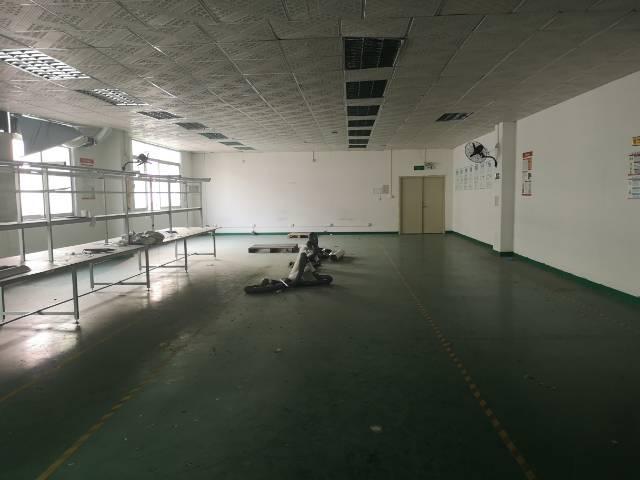 龙华楼上1000㎡带精装修厂房出租-图7