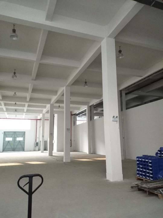 7.5米高防虫,防鼠:防潮全新库房出租