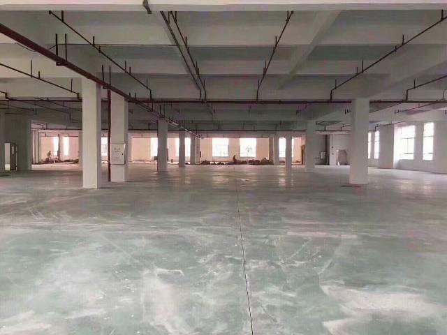 番禺市桥街道新出二楼仓库2100平米近地铁、带消防喷淋-图4