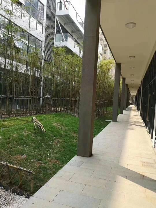 龙华花园式精装办公室招租园区有政策房租补贴