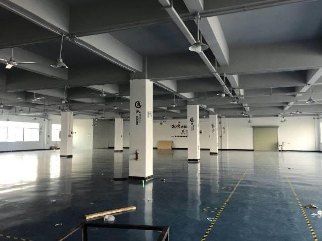 塘厦石鼓新出小面积3楼360㎡带装修办公室配套主线到车间火抢-图2