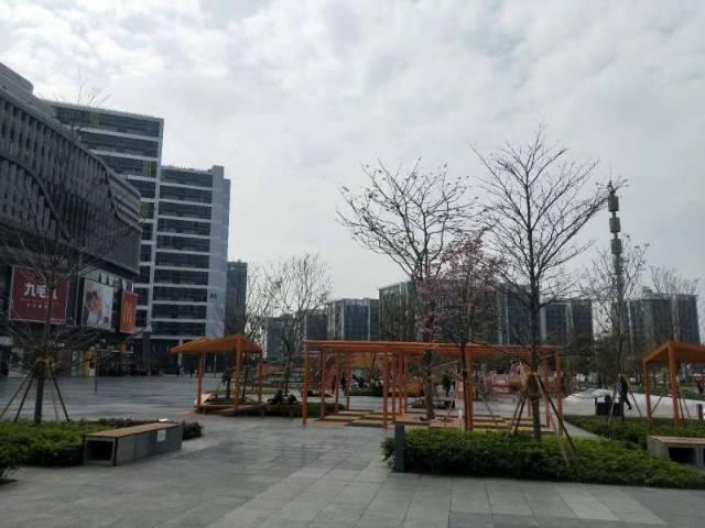 天河区智慧城万科广场附近办公室出租
