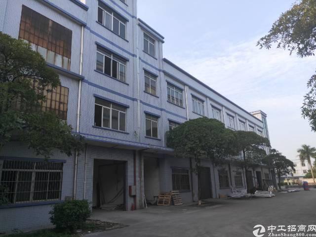 惠州市泰美镇工业园厂房出租