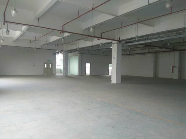 番禺市桥街道新出二楼仓库2100平米近地铁、带消防喷淋-图5