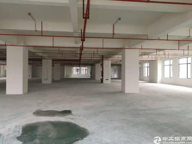 南栅靠长安厚街全新重工业厂房出租每层3000平米,证件齐全-图3