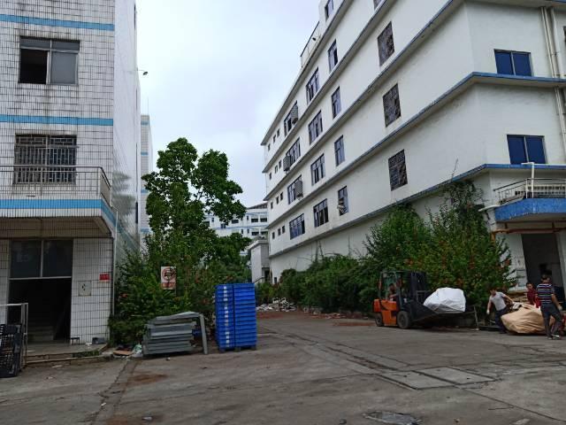 横岗六约新出独院一楼2500平,层高6.2米