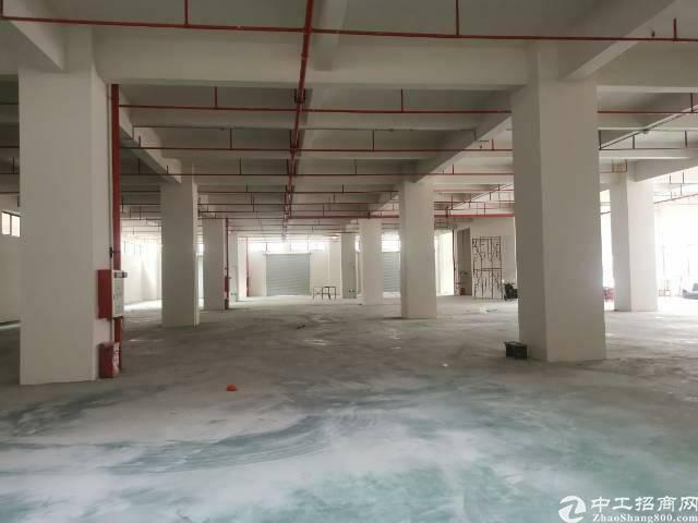 南栅靠长安厚街全新重工业厂房出租每层3000平米,证件齐全-图5
