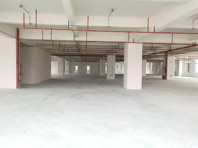 南栅靠长安厚街全新重工业厂房出租每层3000平米,证件齐全-图4