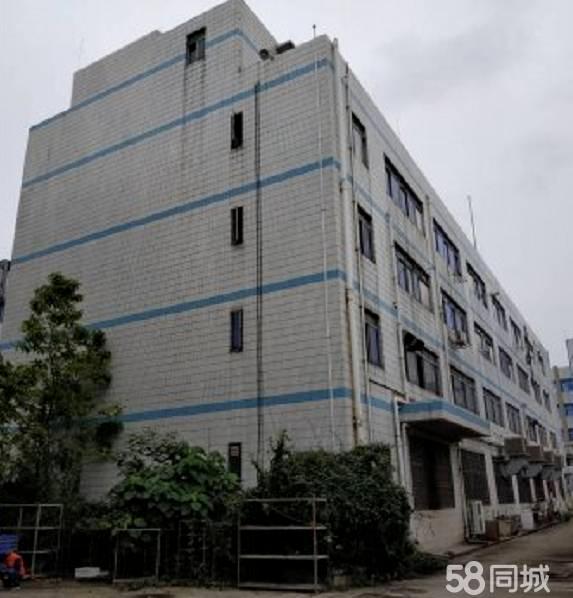 (出租龙岗)横岗智创绿谷10万平红本标准厂房出租,大小可分租-图4