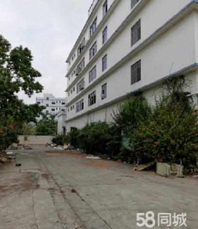 (出租龙岗)横岗智创绿谷10万平红本标准厂房出租,大小可分租