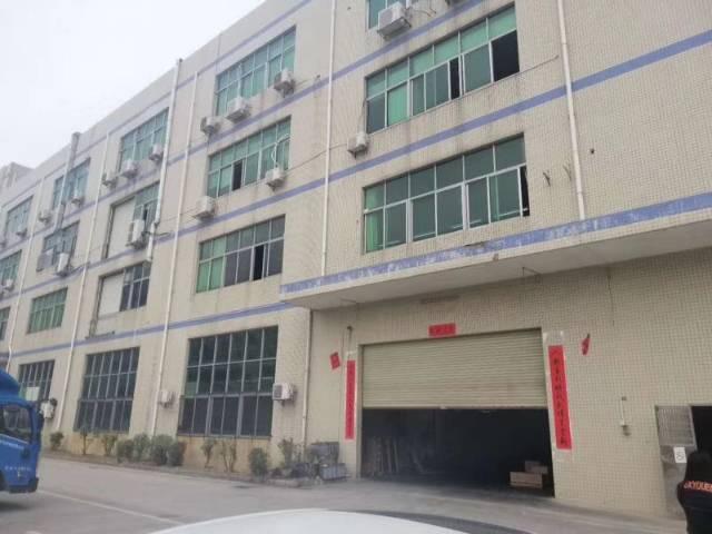 龙岗中心城原房东独院厂房,二楼1300平实际面积,精装修-图4