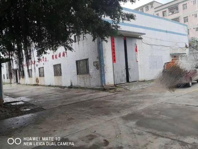 惠州市惠阳区大亚湾独门独院原房东钢构厂房招租