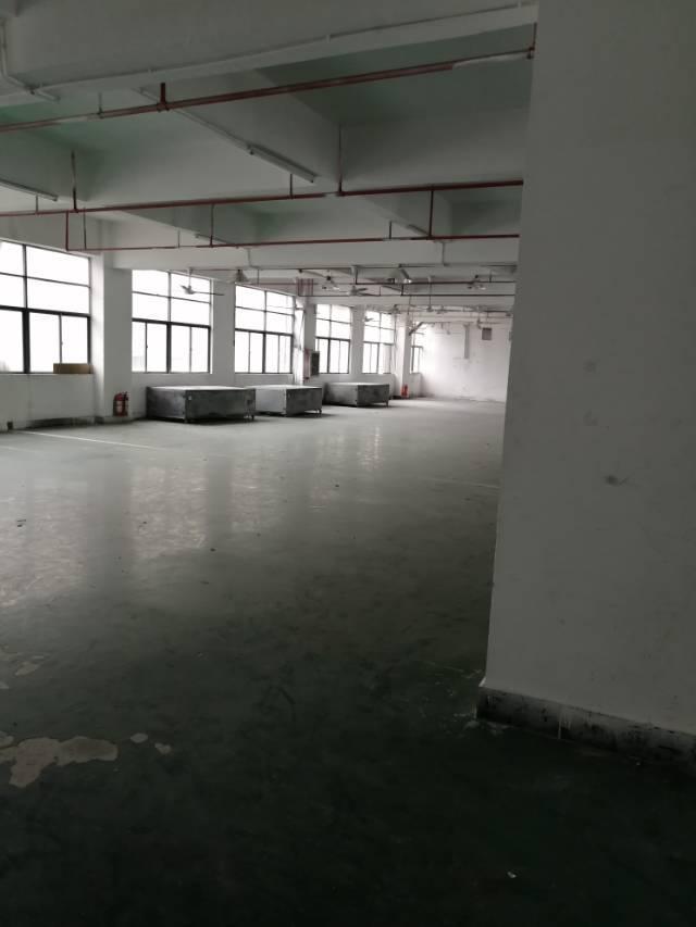 公明新空出1700㎡带精装修办公室地坪漆厂房出租