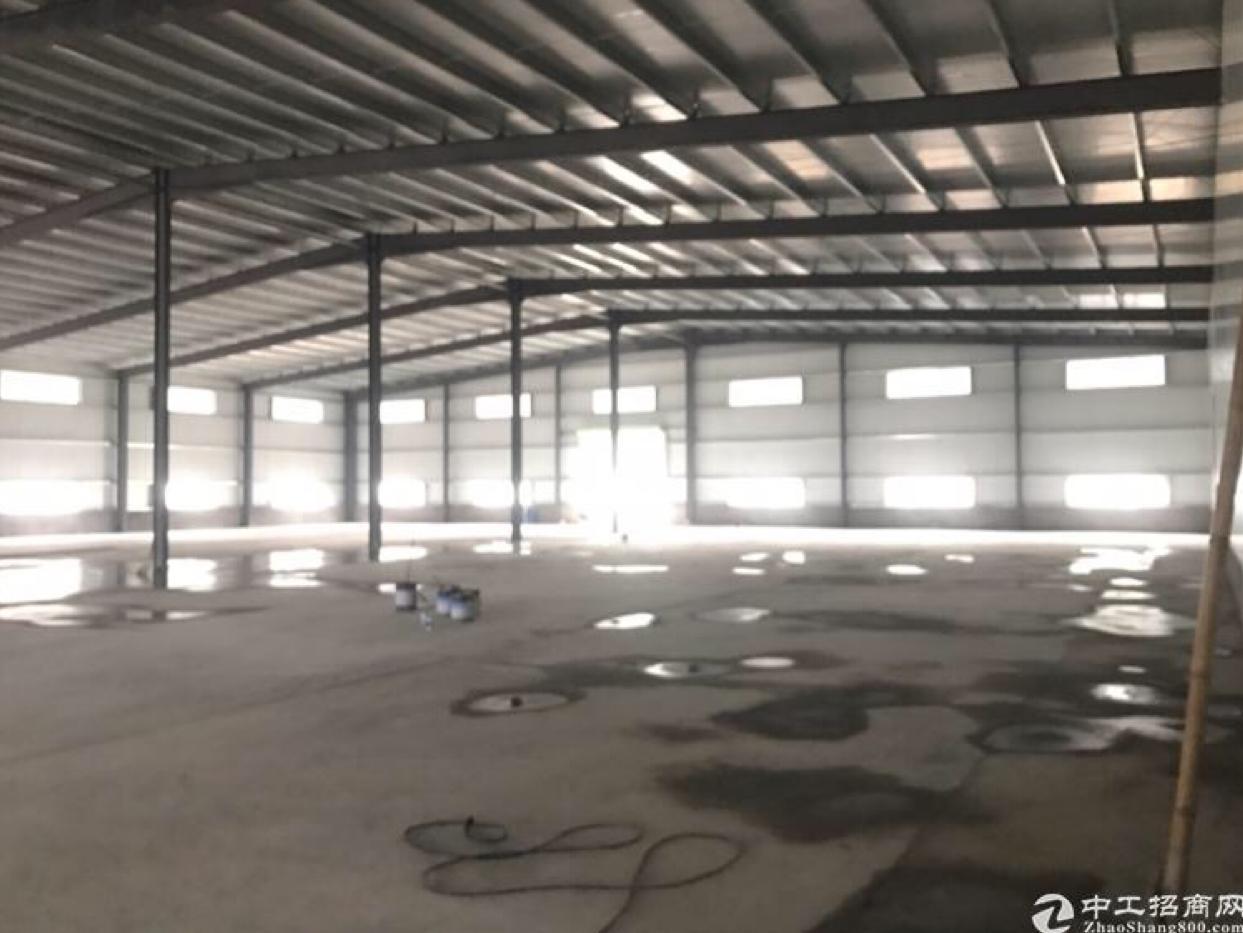 花山原房东钢结构厂房出租,滴水10米