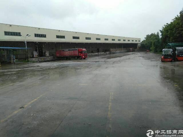 广州黄埔开发大道边大型物流园仓库招租2万平米,可分租
