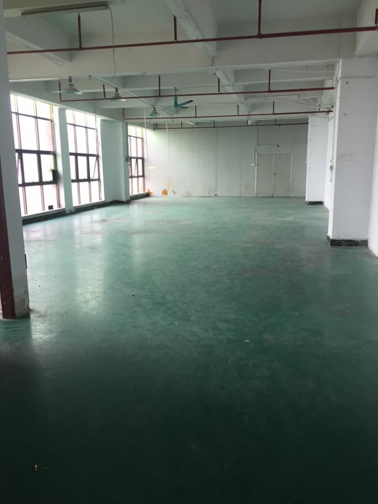 凤岗镇独院楼上400平厂房出租带装修办公室-图2