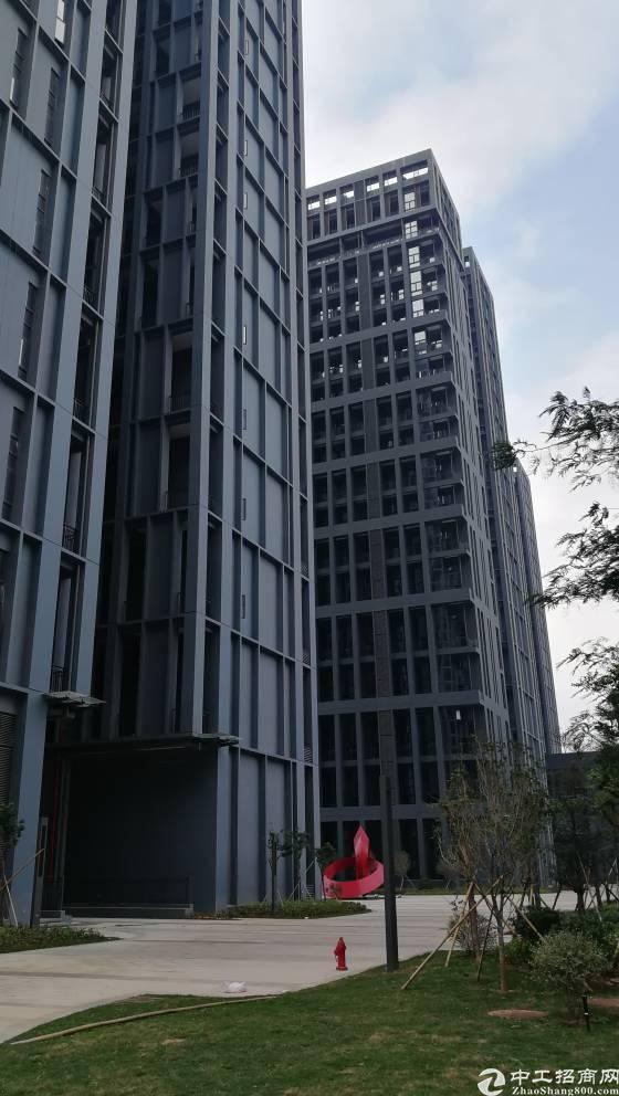 龙岗区横岗地铁站高新产业园招租面积200平方起租