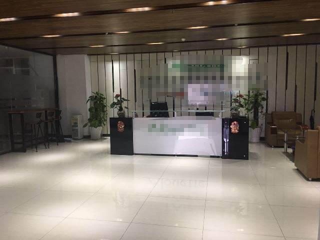 坂田吉华路独院精装修1000平写字楼