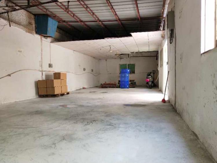 沙井第三工业区,100平铁皮房出租