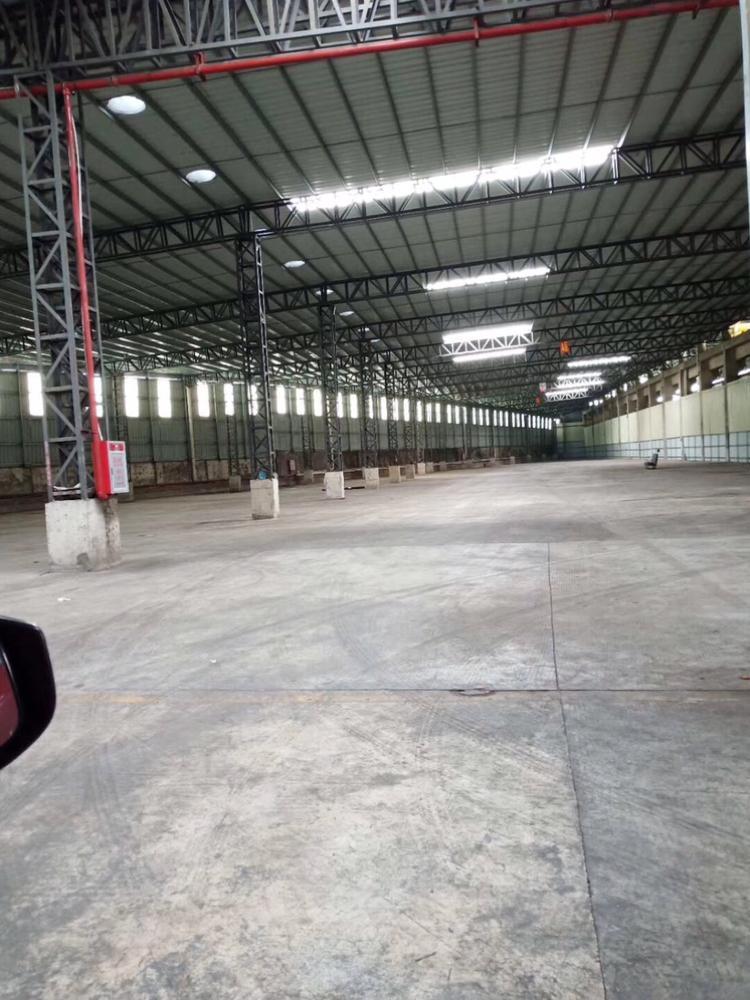 东坑镇新出单一层电商仓库