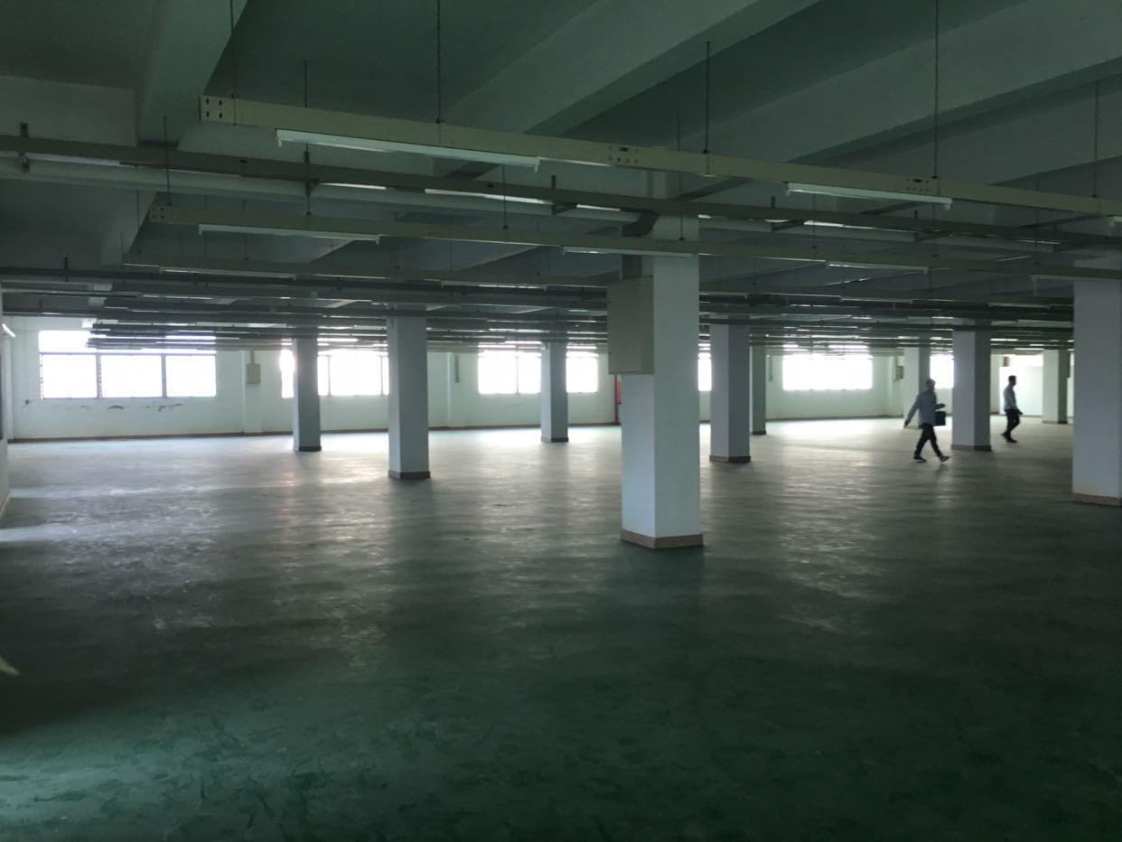 福永怀德原房东10000平米独门独院厂房出租
