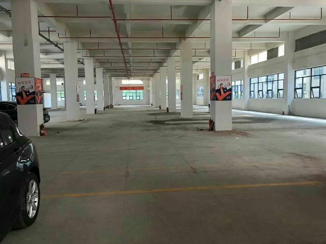 龙华清湖地铁口1楼写字楼层高6米5高2900平出租