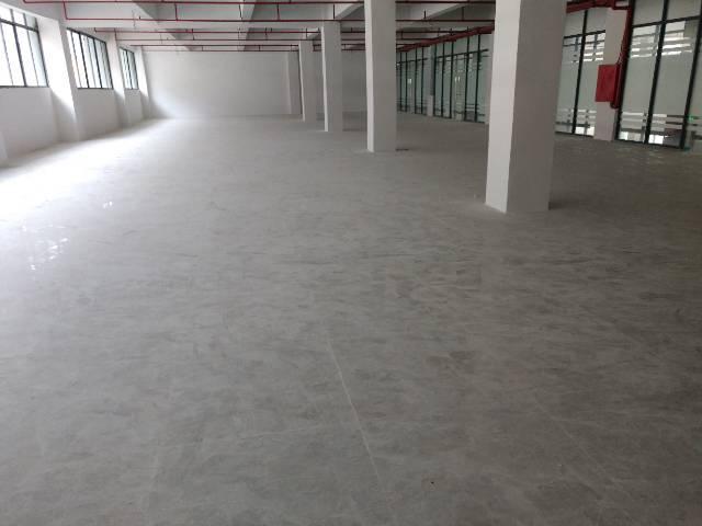 横岗四联学校边原房东精装修写字楼