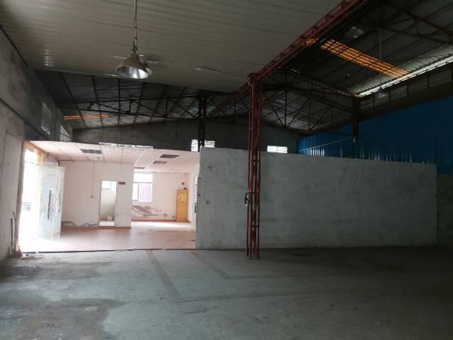 松岗沃尔玛旁边新出钢构厂房带红本1200平方可大小分租