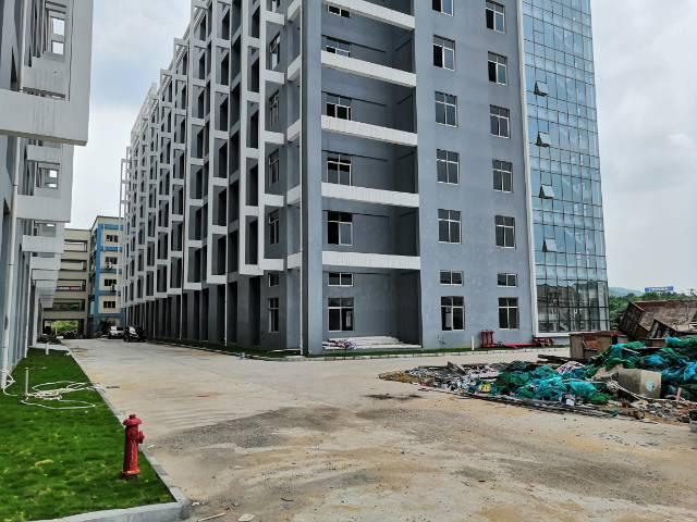 黄江镇G94高速口独院红本厂房40万平方招租-图2