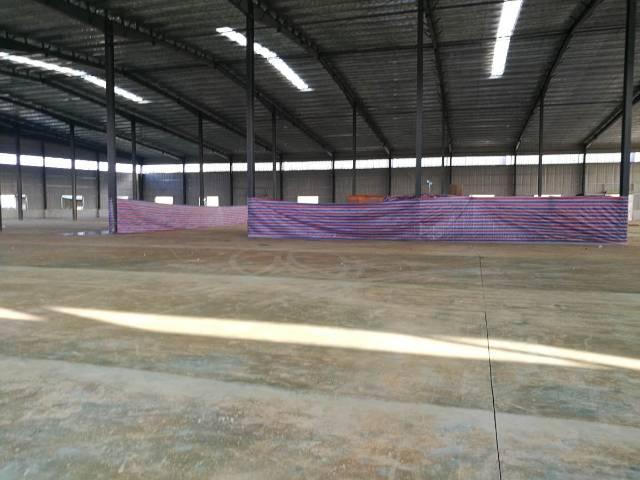 博罗县十米高钢构厂房15元出租-图2