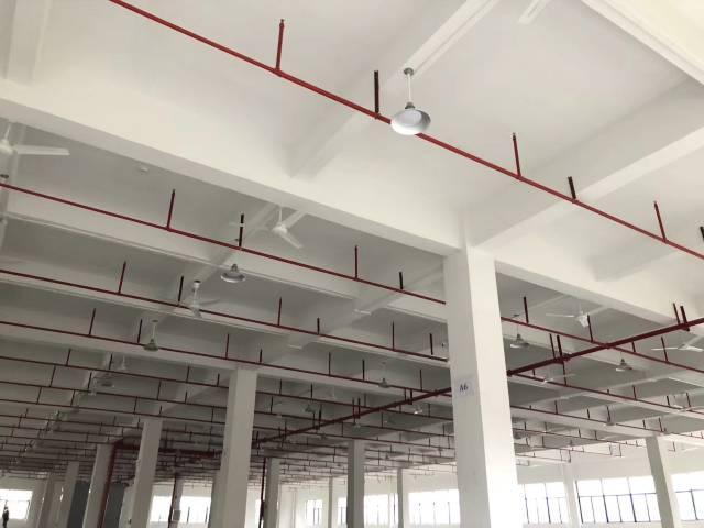 镇隆万里全新标准厂房10000平单层面积2500平-图2