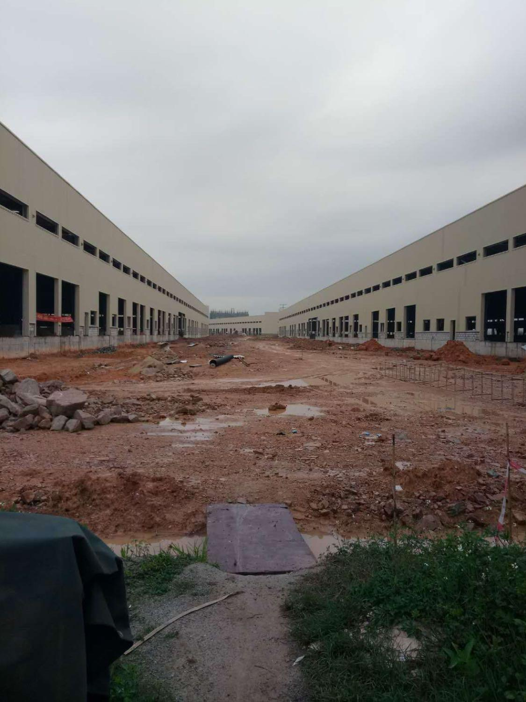 全新广州石碁21万平高标物流仓21万空地免费使用最大的物流仓