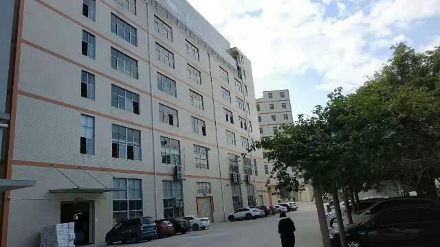 江门.新会30000方新建单一层厂房,可做家具喷漆