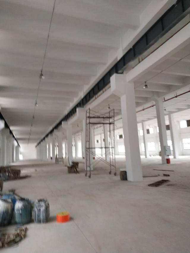 九龙坡区标准厂房大跨度,层高8.4米,单层5000平方