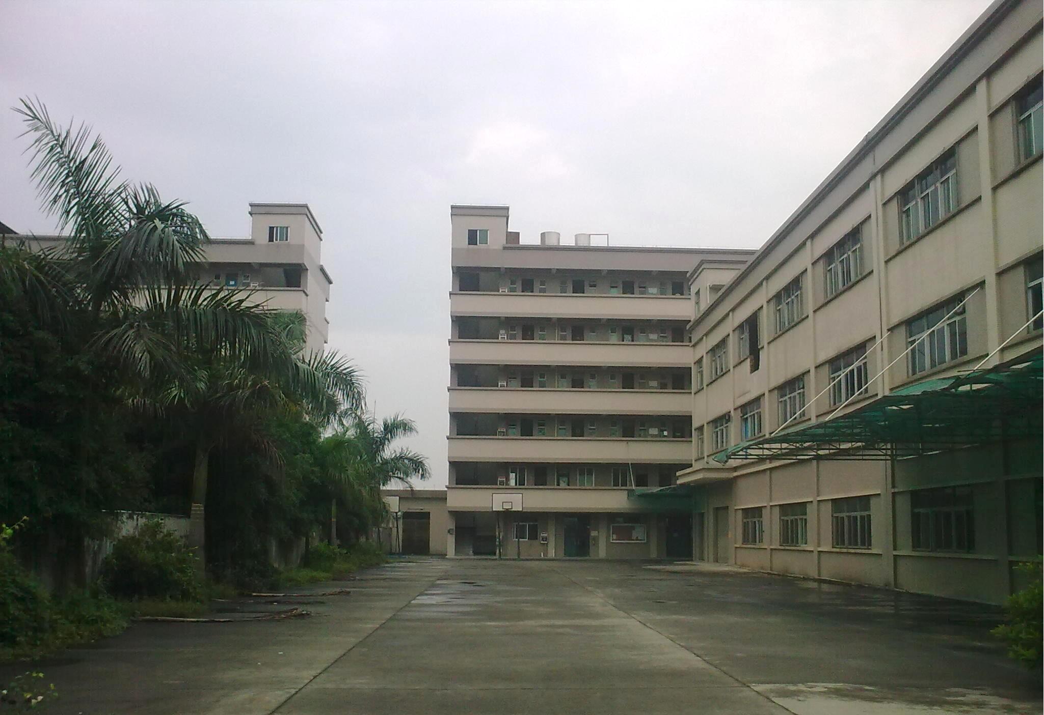 东莞洪梅花园厂房占地21332m²优质国有厂房出售