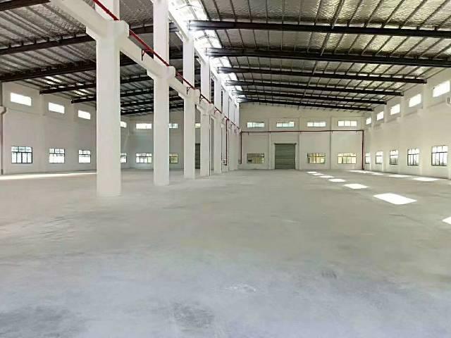 惠东白花工业园3万平方,分栋出租